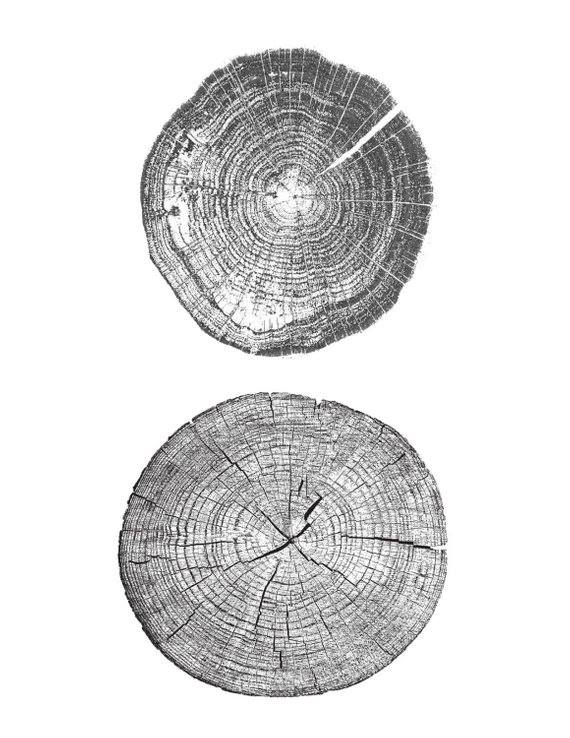 Horton Tree Ring Art